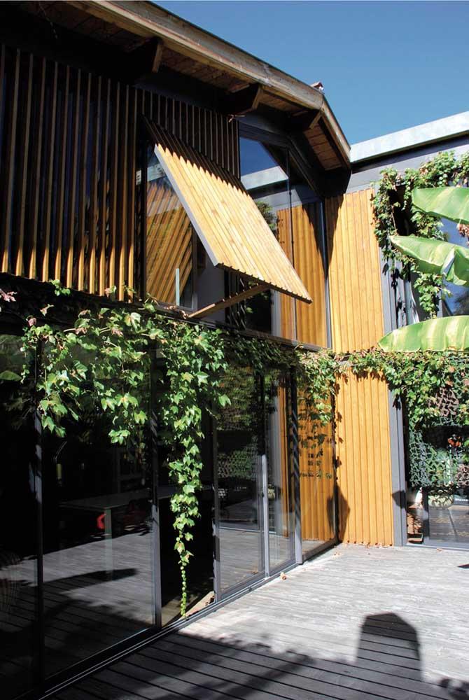 Casa de madeira e vidro com trepadeira suspensa na entrada