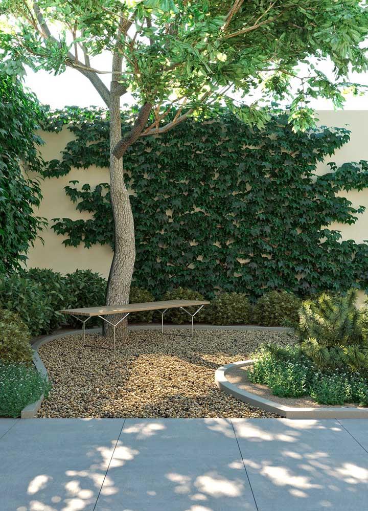 O jardim da casa ganha profundidade e mais frescor com a parede revestida com trepadeira hera