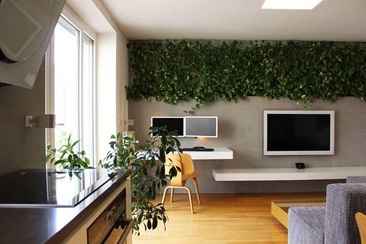 Nada de painel para TV nessa sala; aqui, a proposta é uma parede verde de jiboias