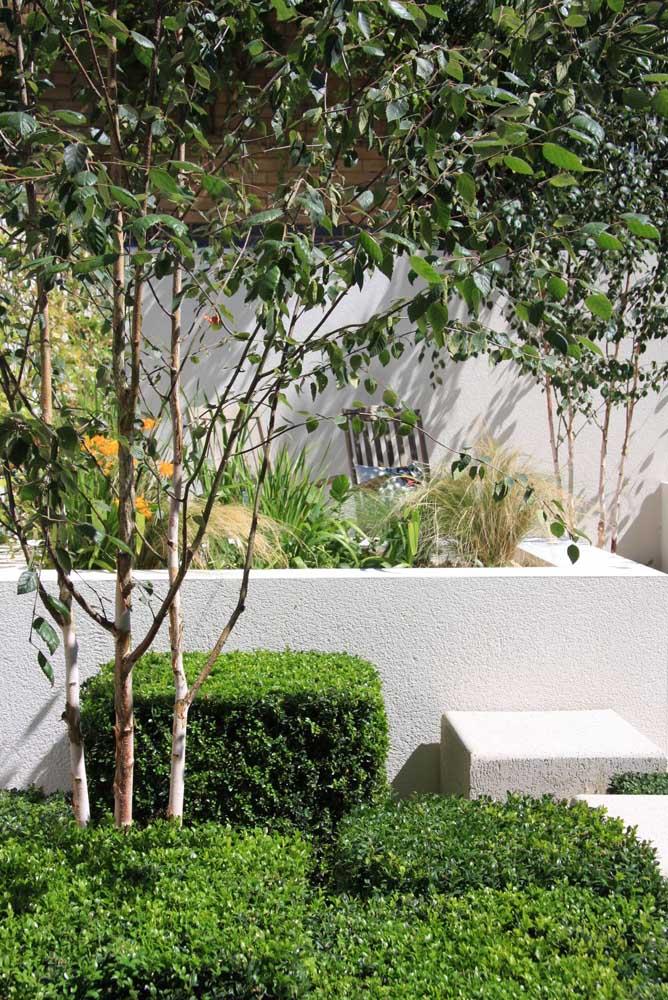 Jardim moderno com tons de branco e muito verde