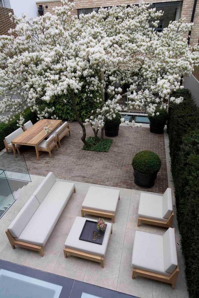 A escolha dos móveis em tons claros e com acabamentos em madeira foi perfeita para esse jardim moderno; destaque para a bela árvore no centro