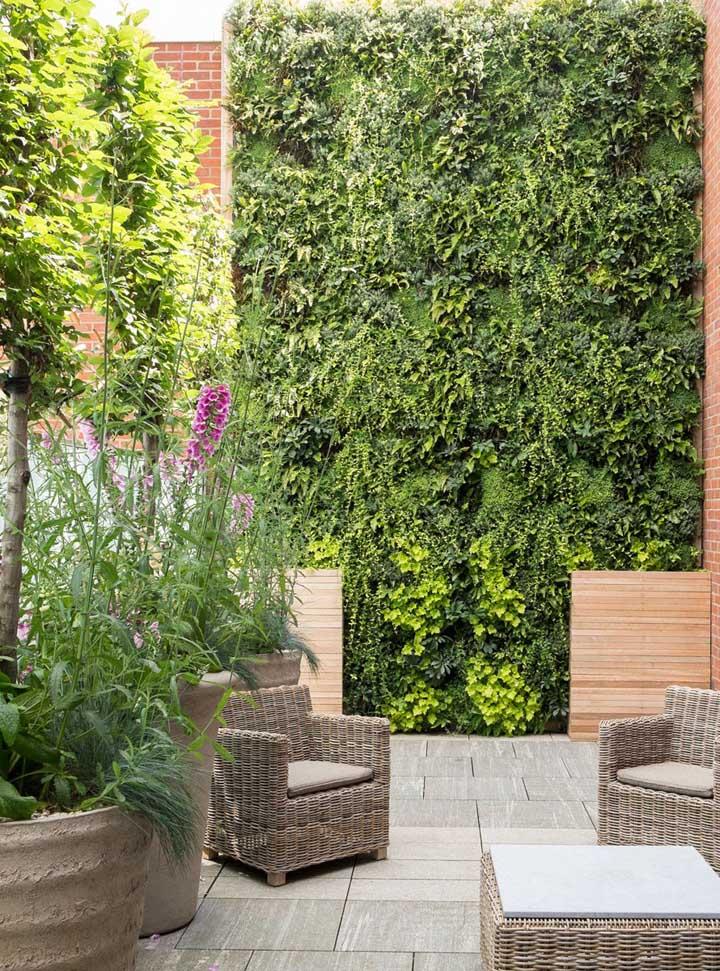 Espaço externo com jardim vertical e plantas em vasos grandes favorecendo a circulação no local