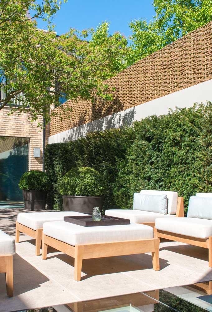 Jardim moderno com cerca viva junto ao muro da casa