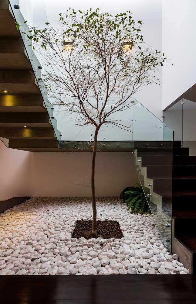 Jardim de inverno no espaço embaixo da escada; traga o verde para realçar esse cantinho da casa