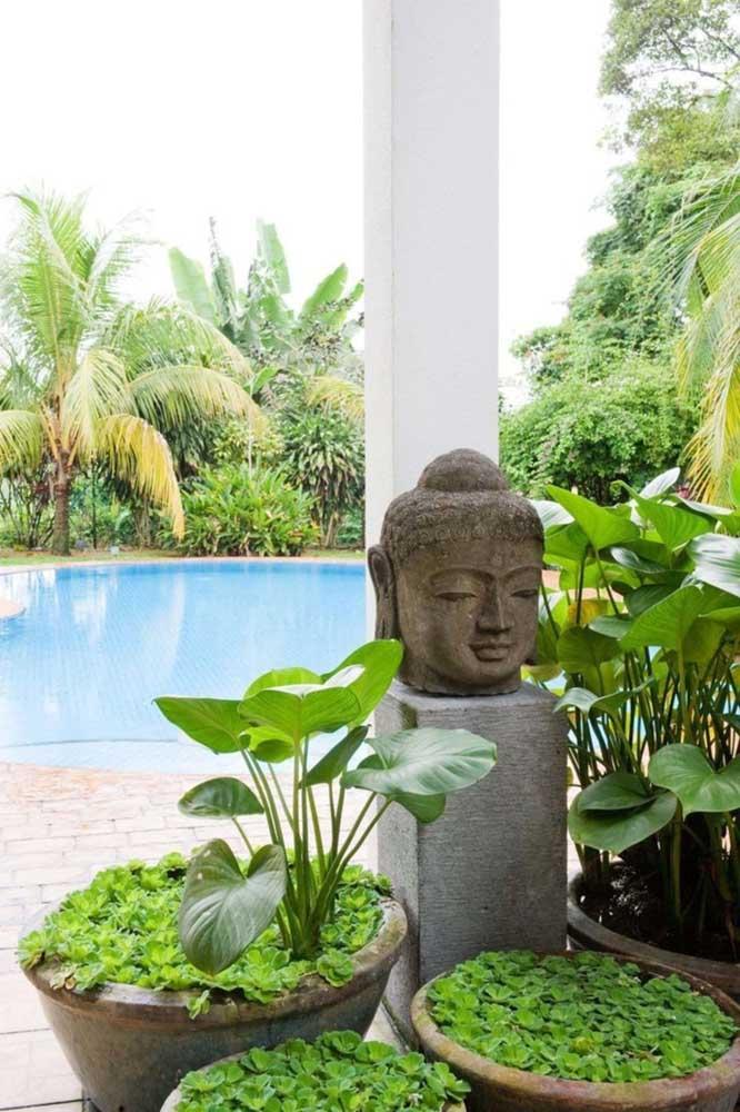 Outra possibilidade é montar o jardim zen em vasos, como nessa imagem