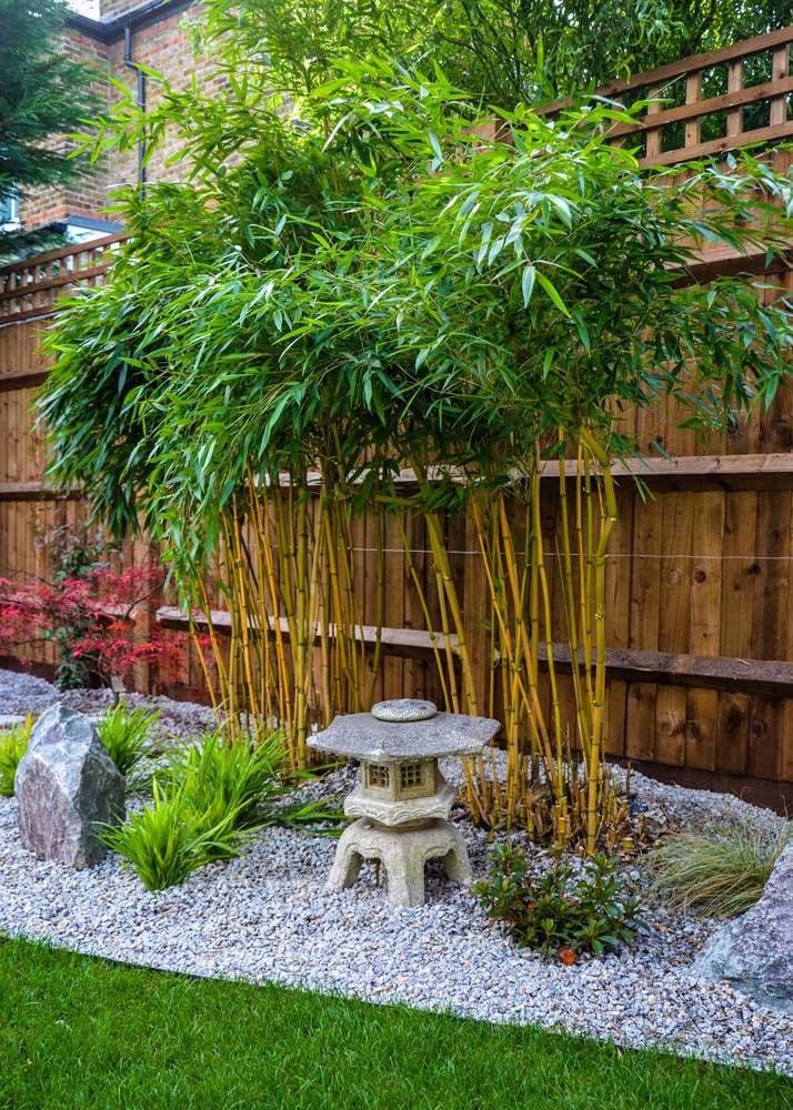 Bambus, pedras e uma réplica de templo budista: está formado o jardim zen