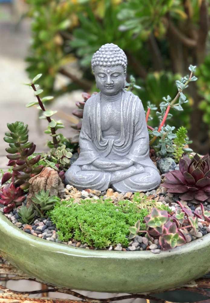 Jardim zen de pedras e suculentas
