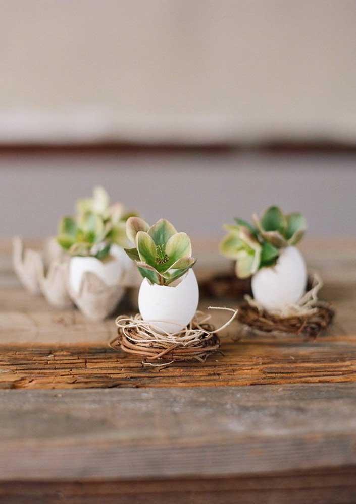 """Que ideia criativa e original de enfeite de páscoa! As suculentas foram """"plantadas"""" dentro das cascas de ovos"""