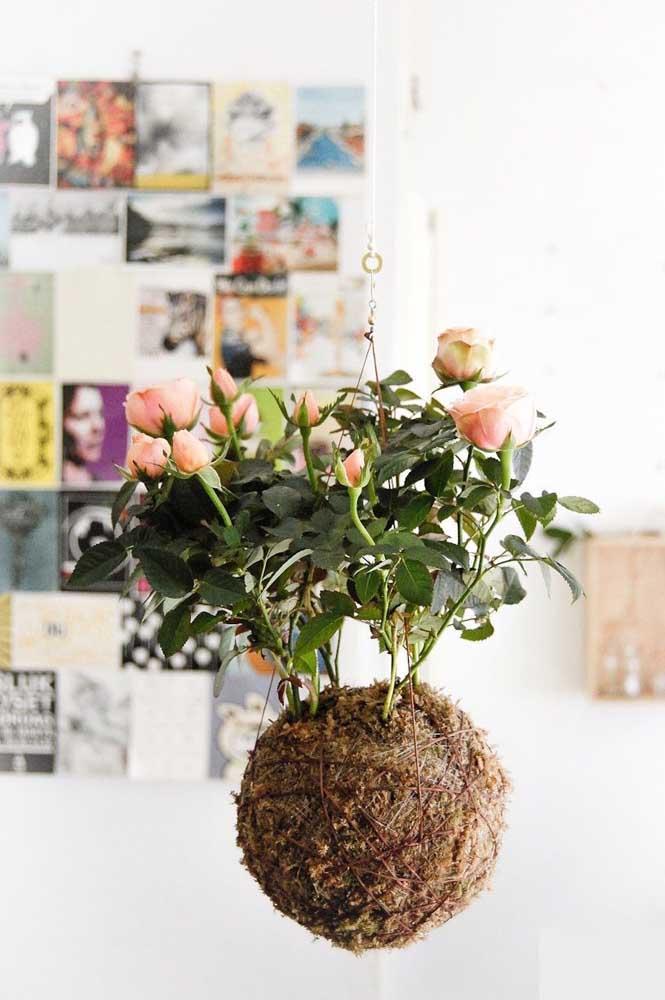 Que charmosa essa kokedama de rosas! Merece um lugar de destaque na casa