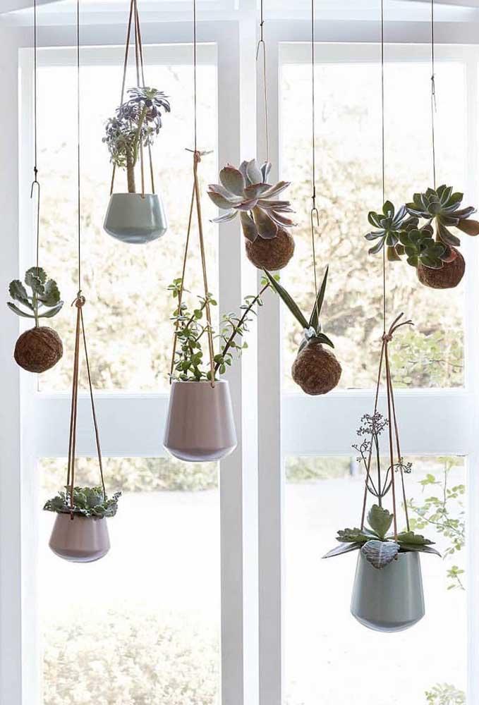 Jardim suspenso de kokedamas; a janela ampla garante toda a luminosidade necessária para as plantinhas