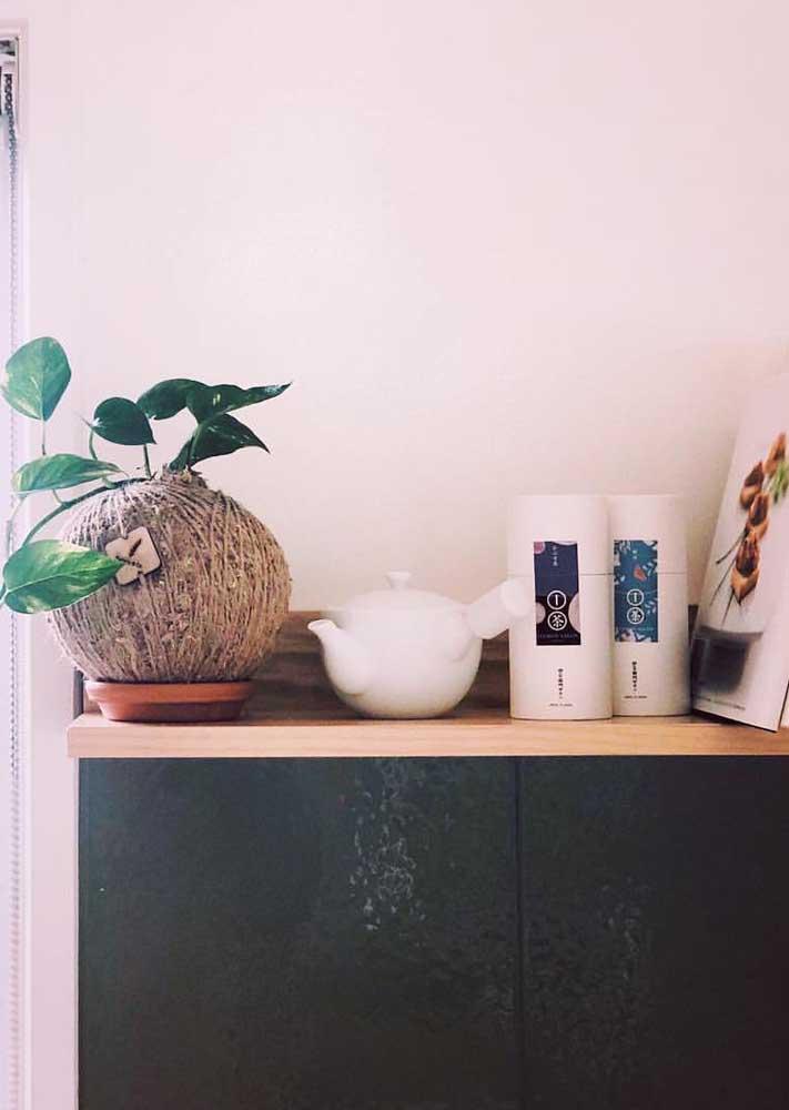 As kokedamas podem ser usadas para decorar todo ambiente da casa, do banheiro à cozinha