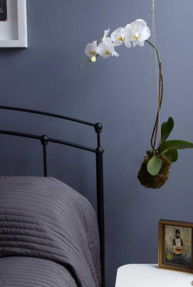 E para o quarto do casal a opção foi por uma elegante kokedama de orquídea branca