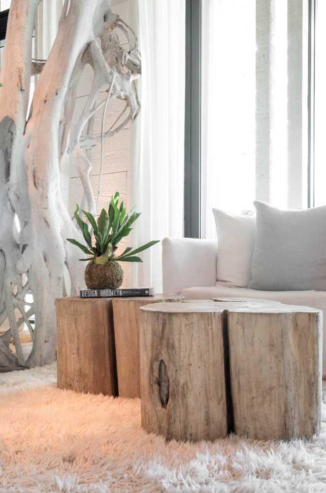 Aqui, os troncos de árvore rústicos formam um cenário perfeito para a kokedama