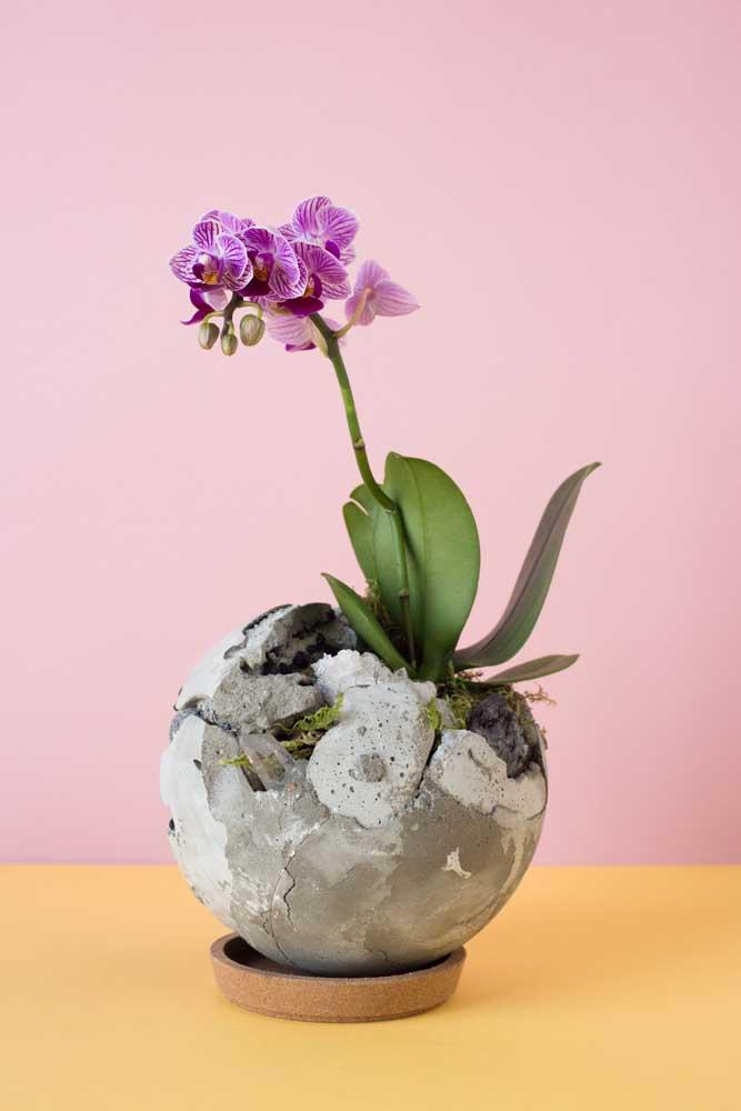 Uma versão criativa e diferente de kokedama: aqui, o arranjo foi feito de concreto