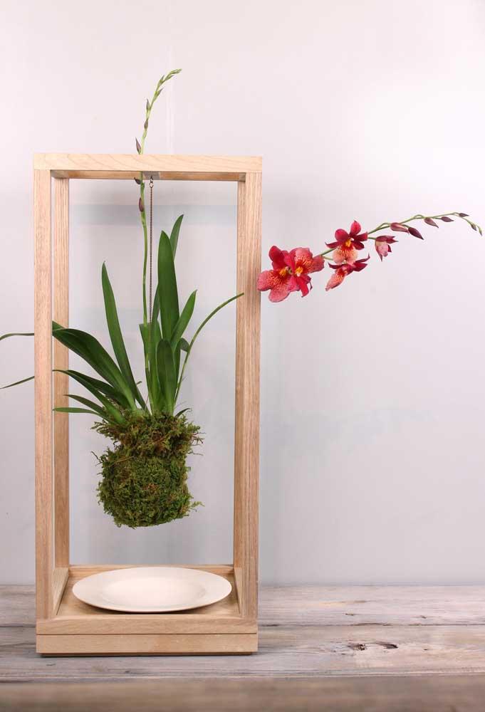 A kokedama de orquídea ganhou um suporte especial de madeira feito só para ela