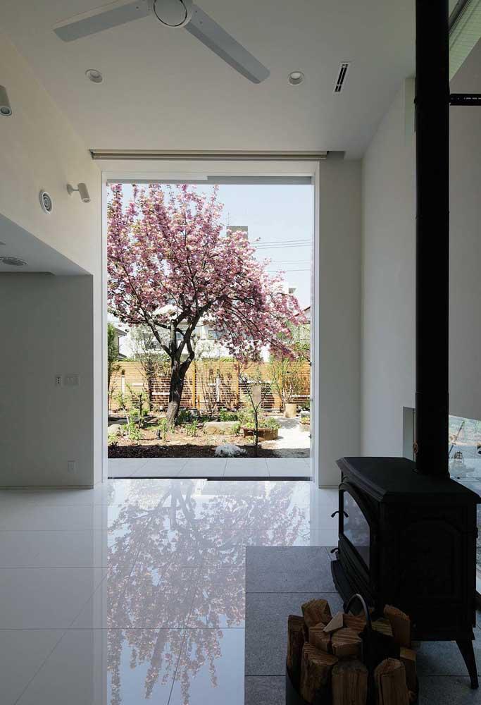 De dentro de casa já é possível contemplar a beleza da cerejeira que fica no jardim