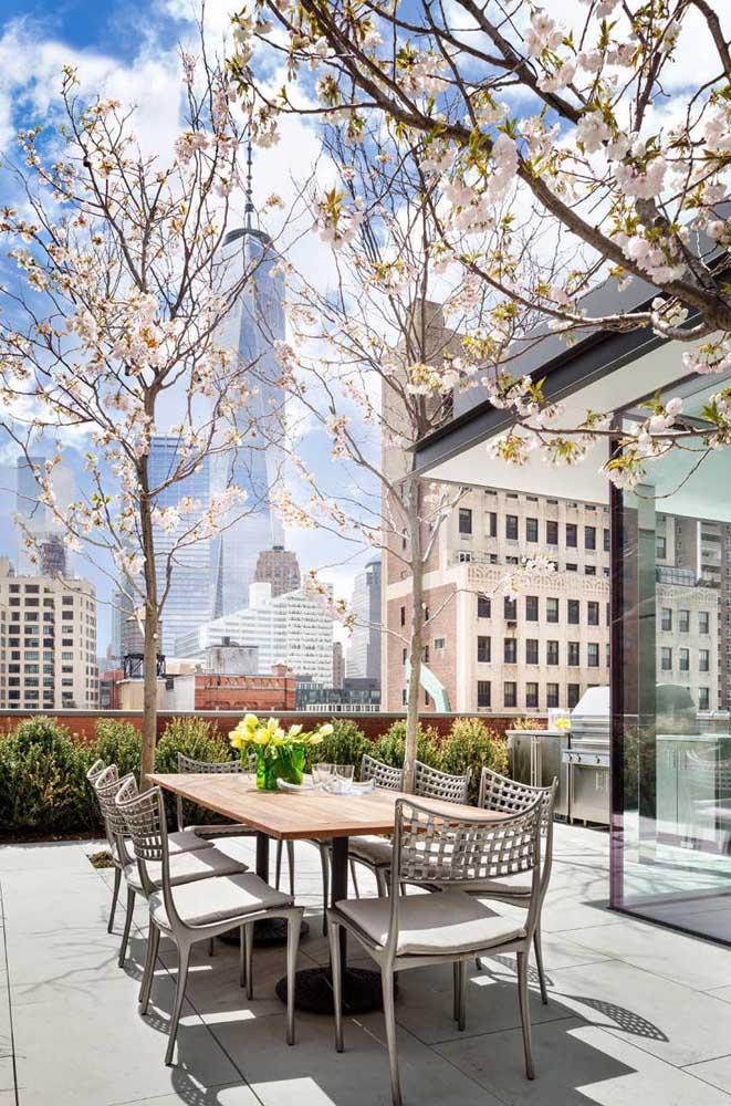 Uma vez por ano, os moradores desse apartamento podem se deliciar com o espetáculo das cerejeiras