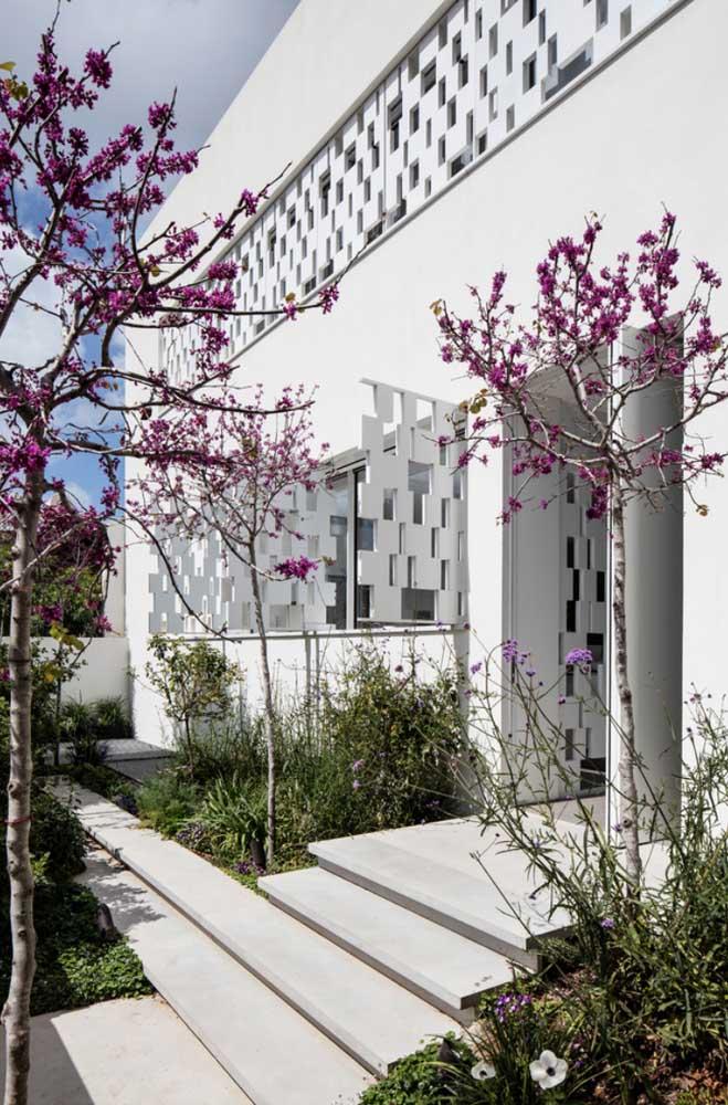 Cerejeiras na entrada da casa, dando as boas vindas a quem chega