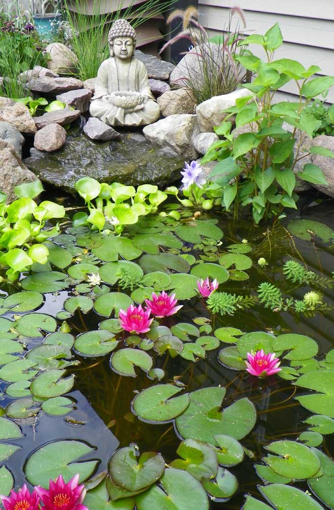 Jardim zen com mini lago decorado com flores de lótus: um local que inspira paz, beleza e contemplação