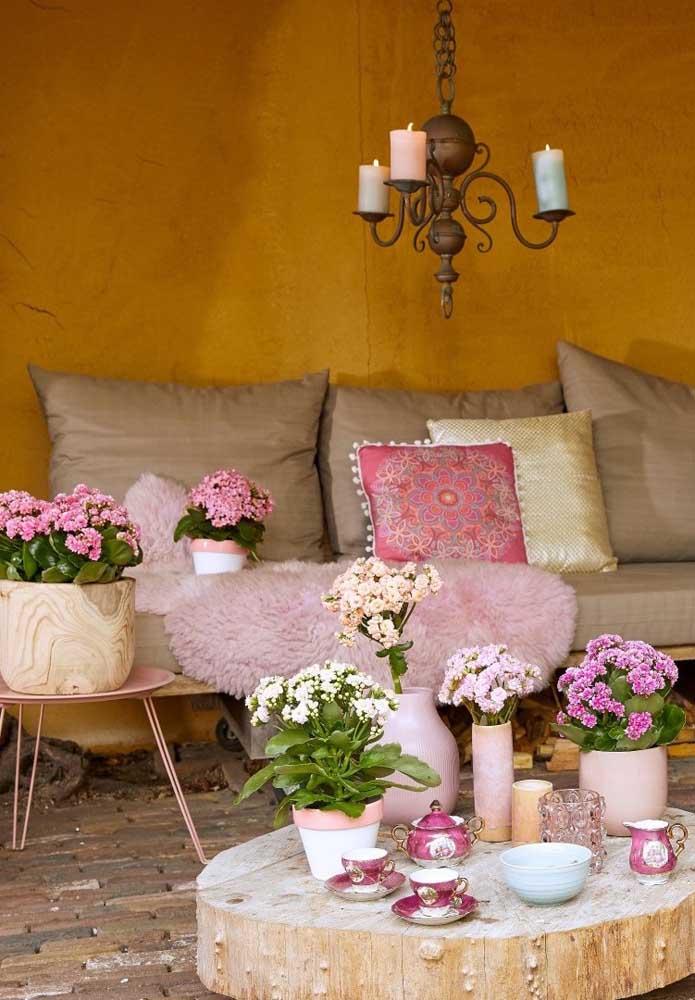 As kalanchoes dominam a decoração dessa sala de estar em estilo rústico