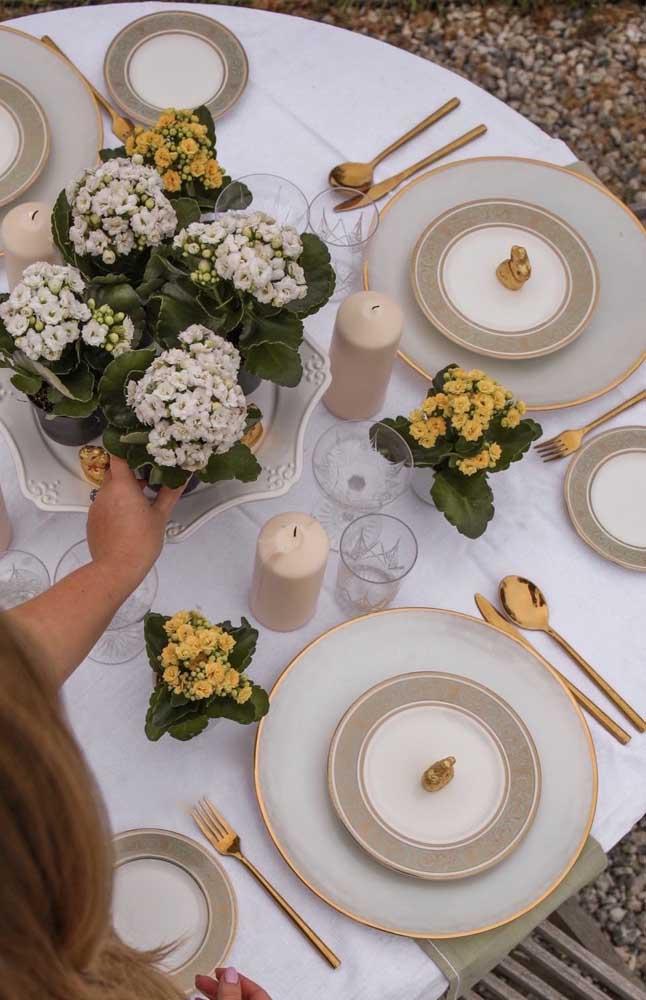 A variedade de cores da kalanchoe permite que a planta seja usada para compor diferentes decorações de festas, especialmente casamentos