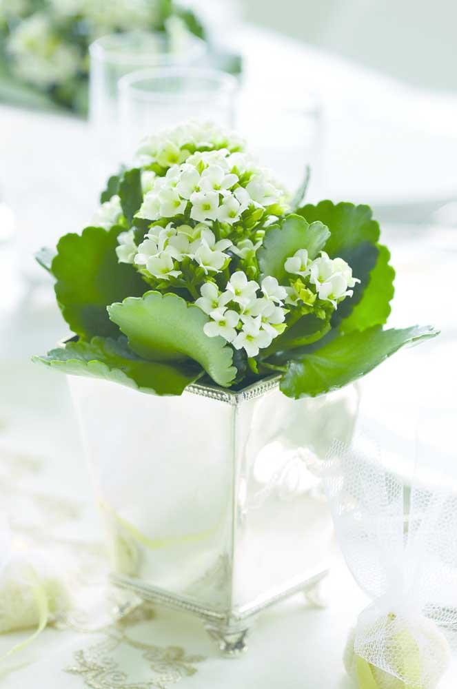 Decoração elegante feita com kalanchoes brancas