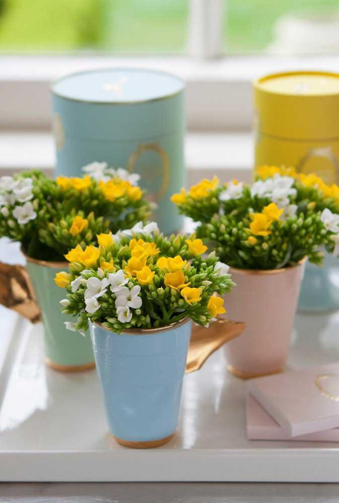 Arranjos pequenos e delicados feitos com flores de kalanchoes nas cores amarelo e branco