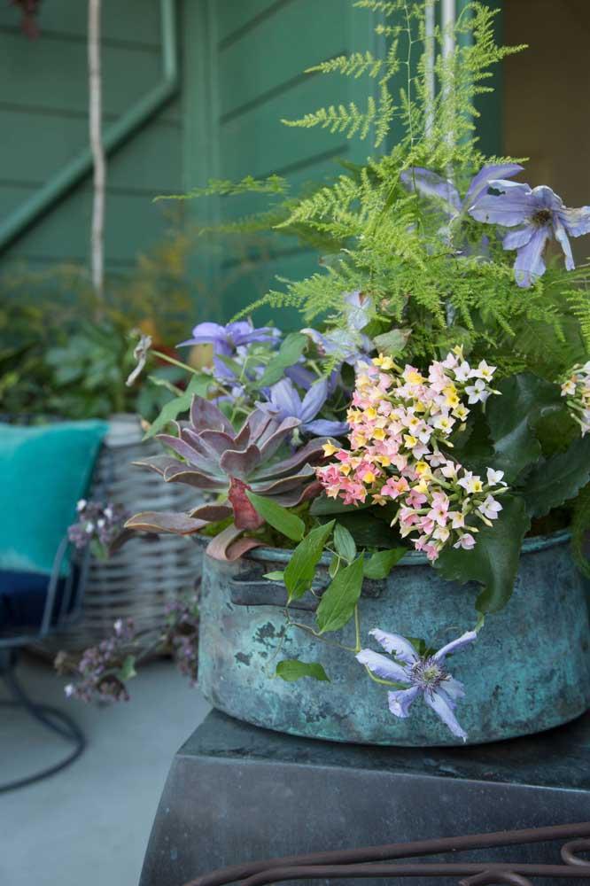 Kalanchoes, orquídeas, suculentas: tem um pouco de tudo nesse vaso