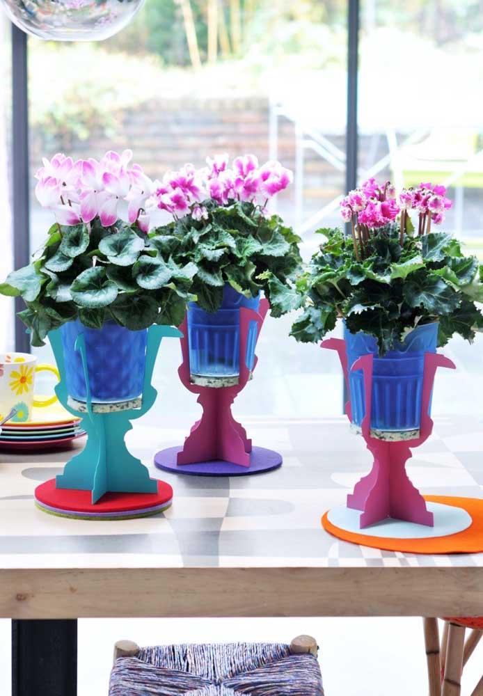 Kalanchoes rosas no suporte azul, um bonito contraste de cores