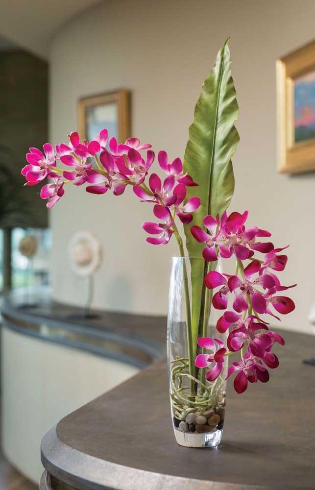 Orquídea Vanda cultivada no vaso de vidro com pouca água e pedras; ambiente perfeito para a planta