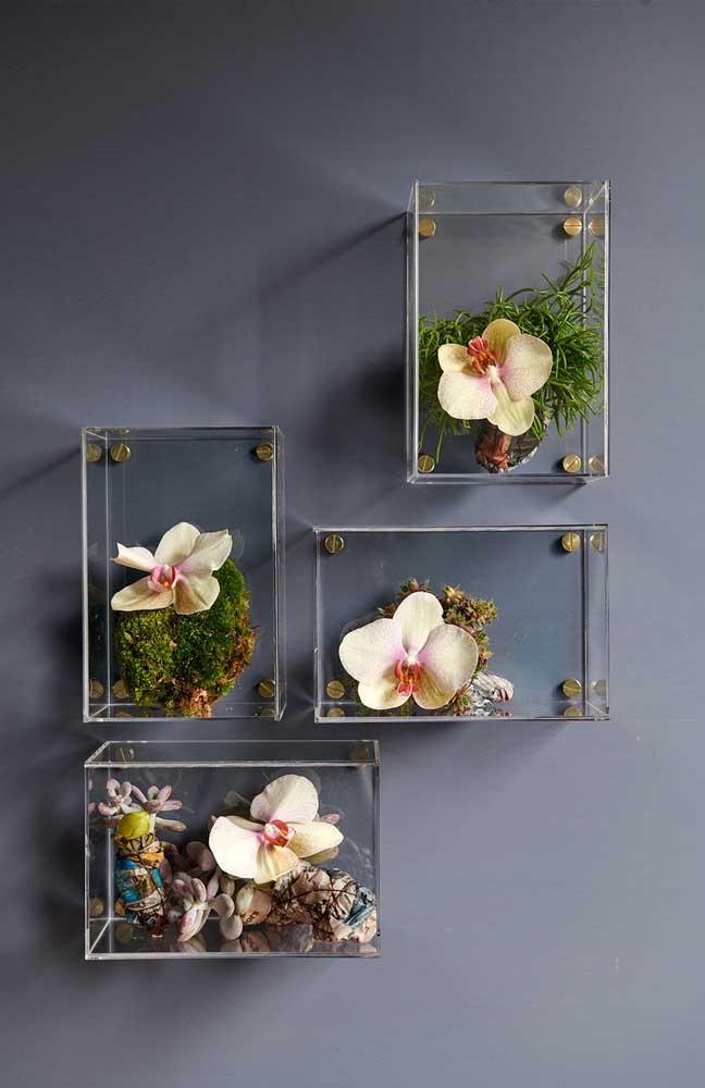 Linda composição de flores da orquídea Vanda na parede