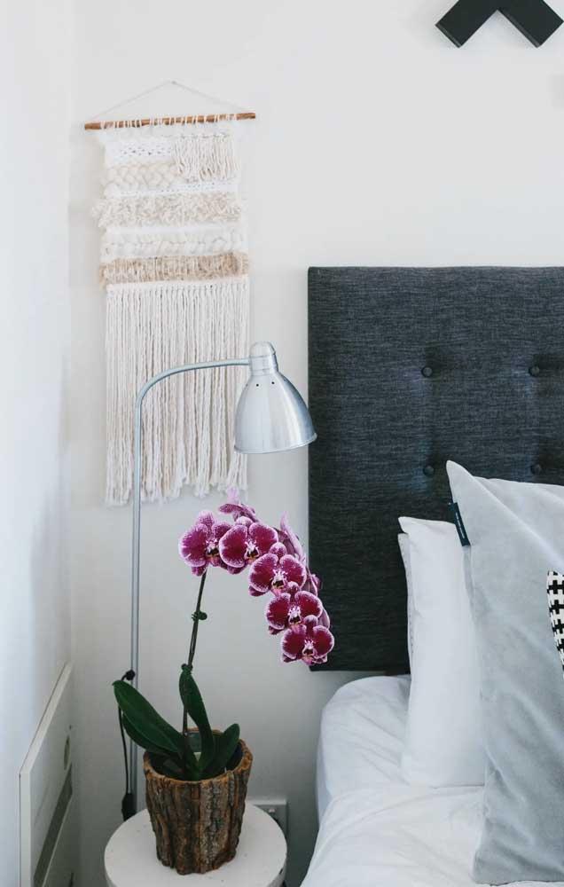 Para decorar o quarto do casal, um vaso de Vanda ao lado da cama