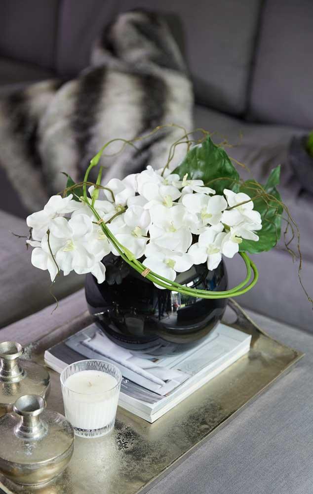Brancas e delicadas, a orquídea Vanda surpreende pela variedade de cores