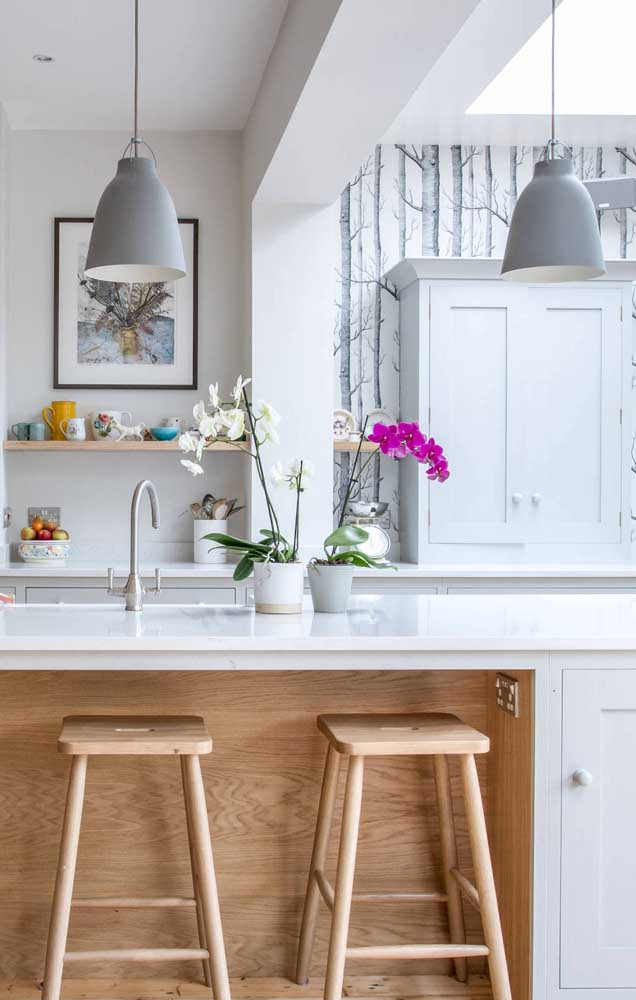 Duas cores de orquídea Vanda para a bancada da cozinha
