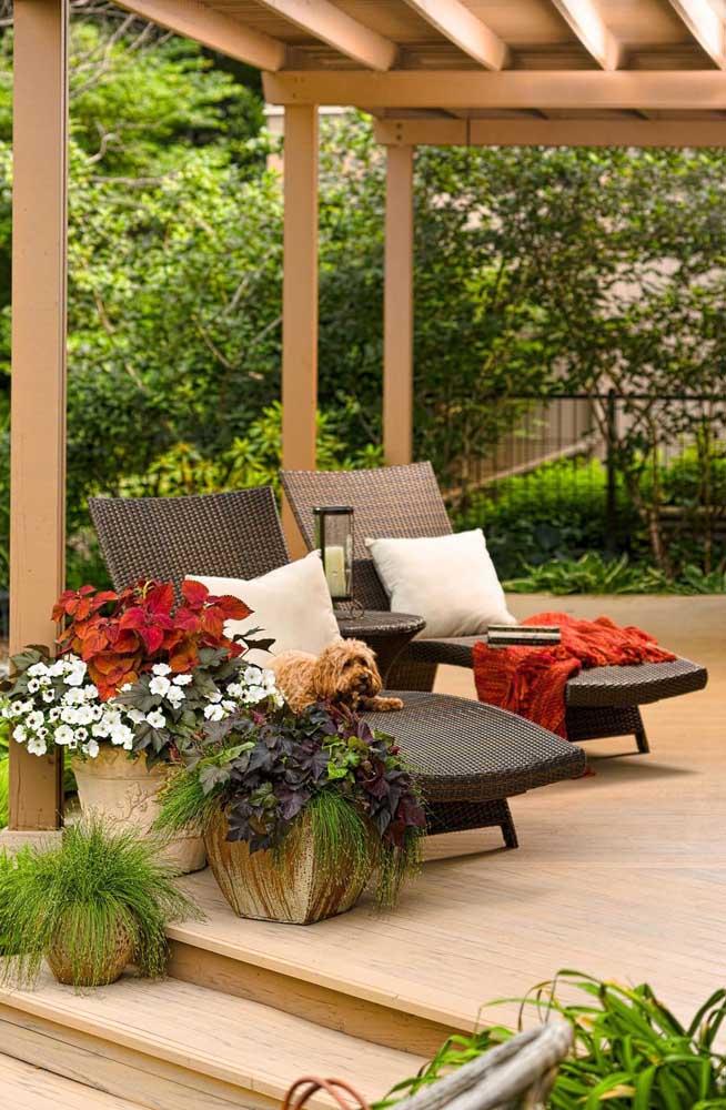 Terraço decorado com vasos de plantas variados, entre eles o de petúnias