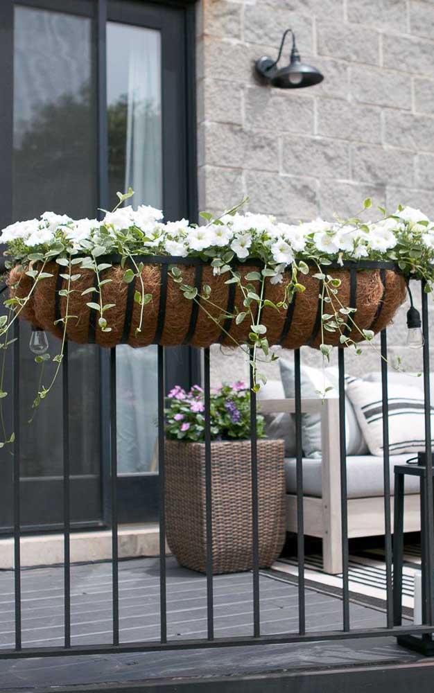 Varanda de apartamento embelezada pela jardineira florida de petúnias