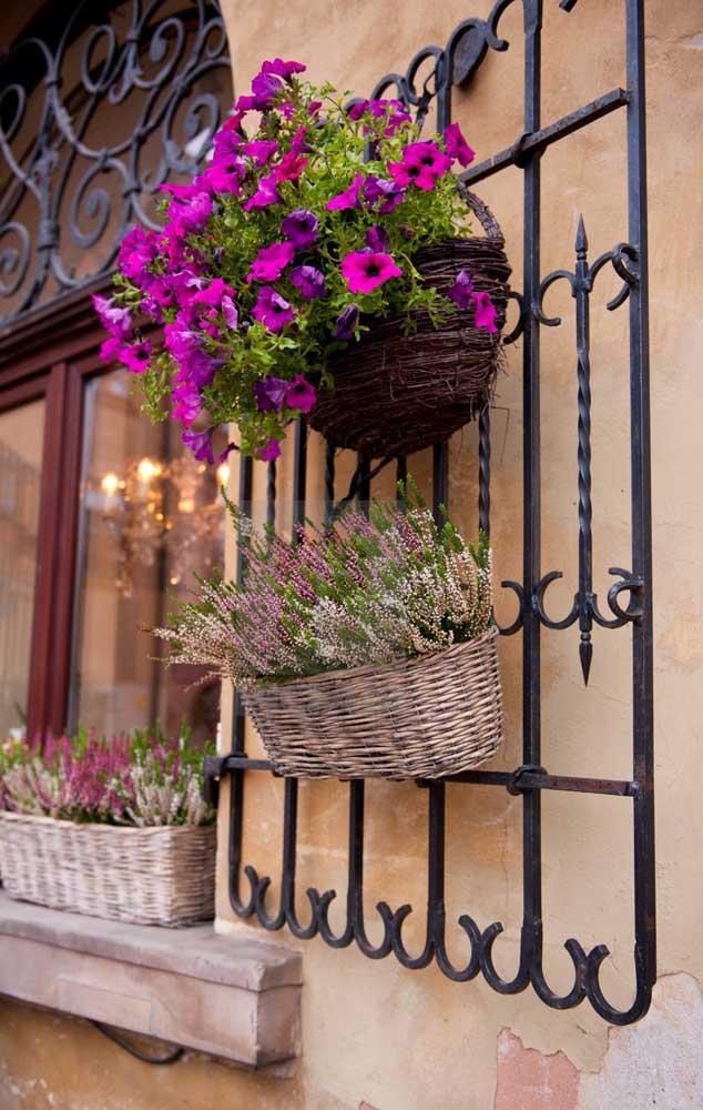 As petúnias são perfeitas para criar aquela atmosfera romântica na entrada da casa