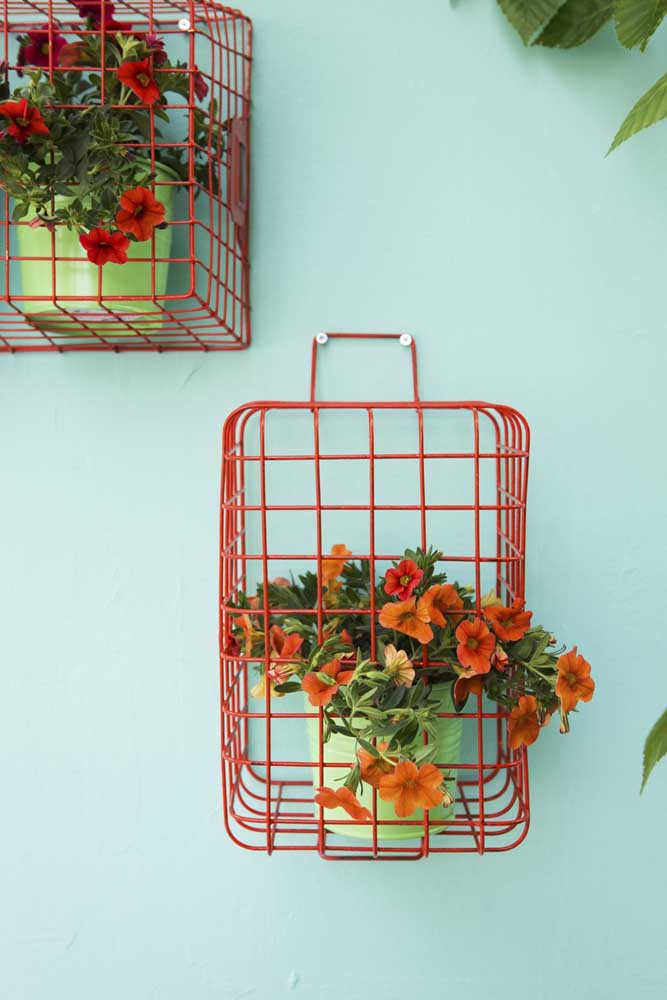 Que ideia diferente para cultivar suas petúnias: dentro de cestinhos aramados coloridos