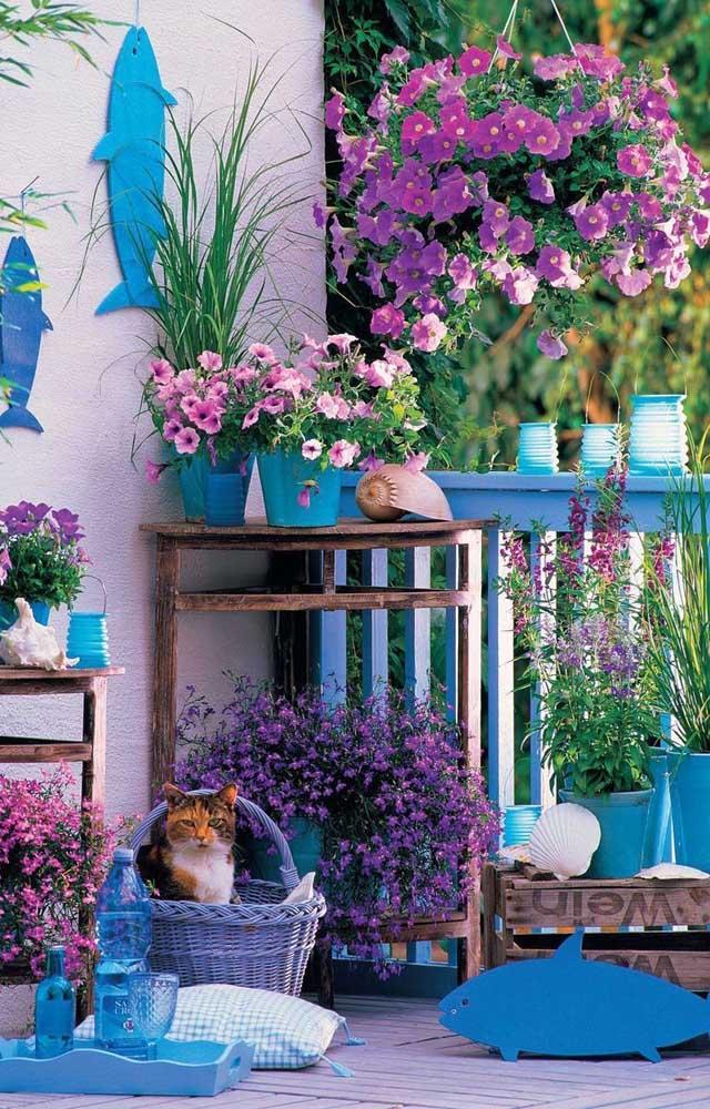 Um espetáculo de cores nessa área externa; as flores, inclusive as de petúnia, enchem o espaço em tons que vão do rosa suave ao roxo