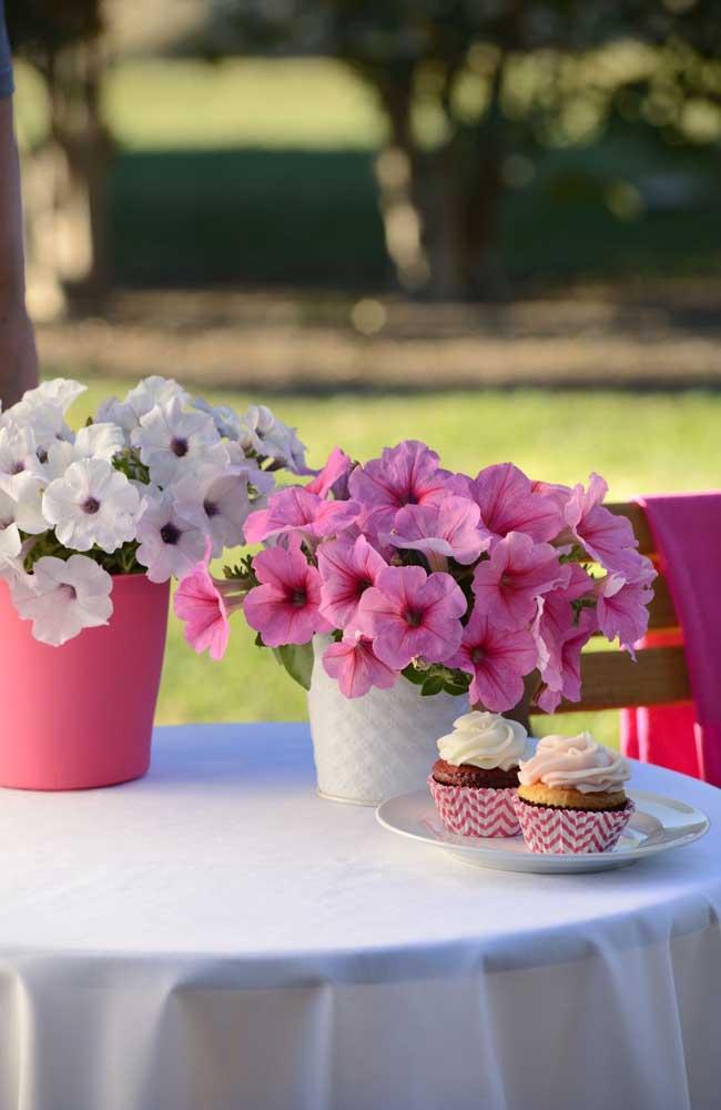 A delicadeza das petúnias combina muito bem com decorações de festas românticas