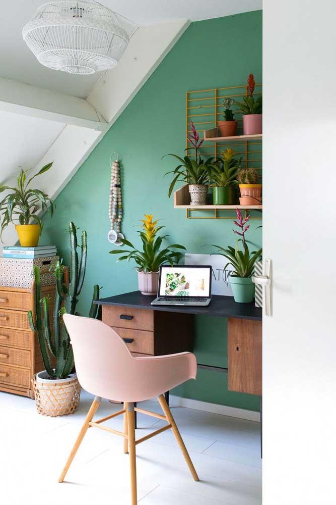 Home office ricamente decorado com bromélias de tipos variados