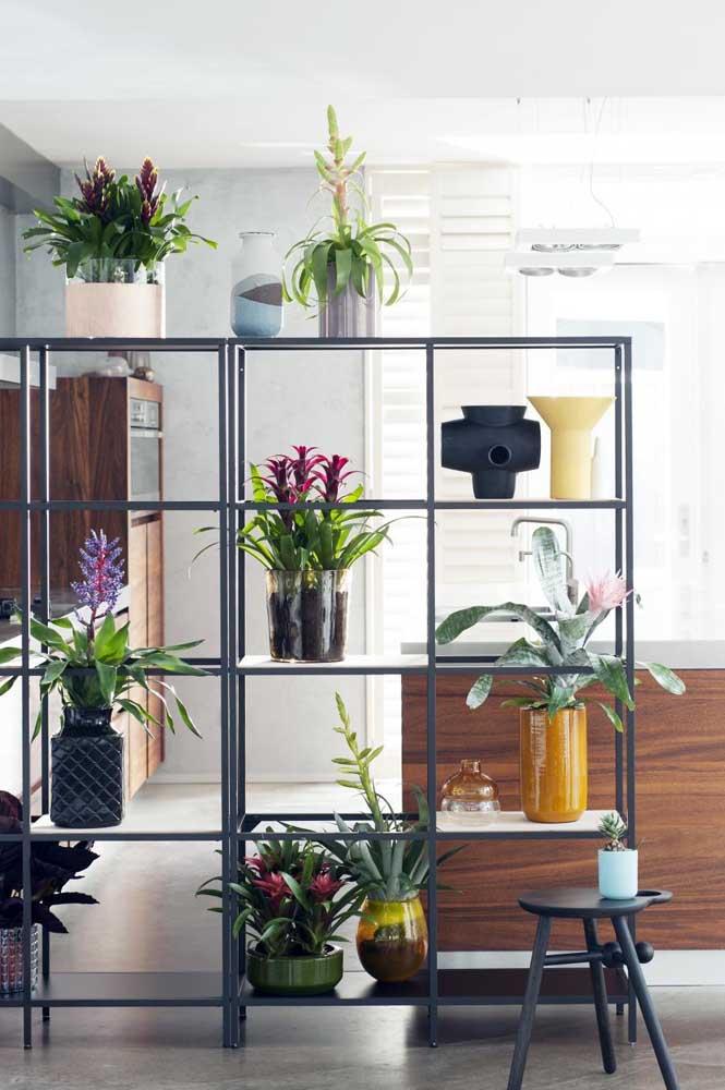 A divisão de ambientes desse apartamento é feito com as lindas e floridas bromélias