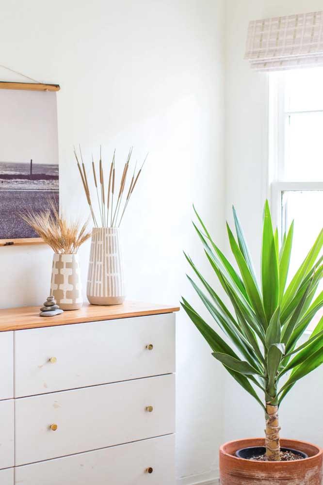 As folhas verdes e muito vivas da Iuca são o destaque dessa sala de estar clean e neutra