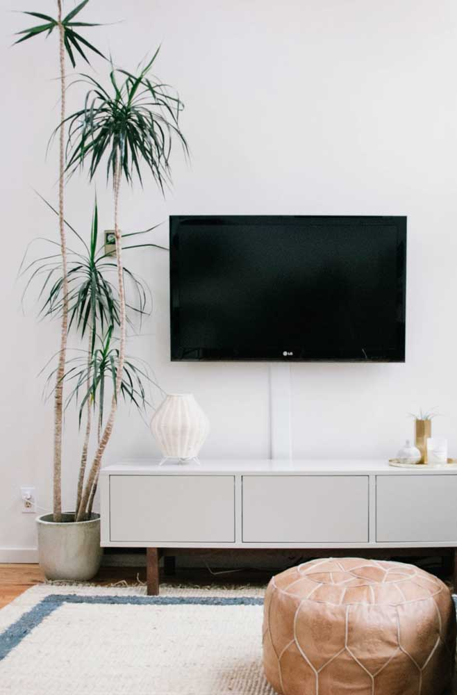 A beleza rústica da Pleomele é o destaque dessa sala de estar