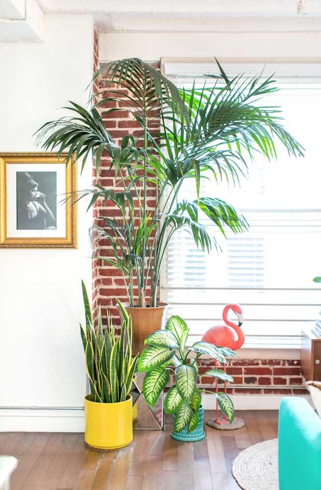 O visual rústico da parede de tijolinhos casou perfeitamente com o vaso de Palmeira Areca