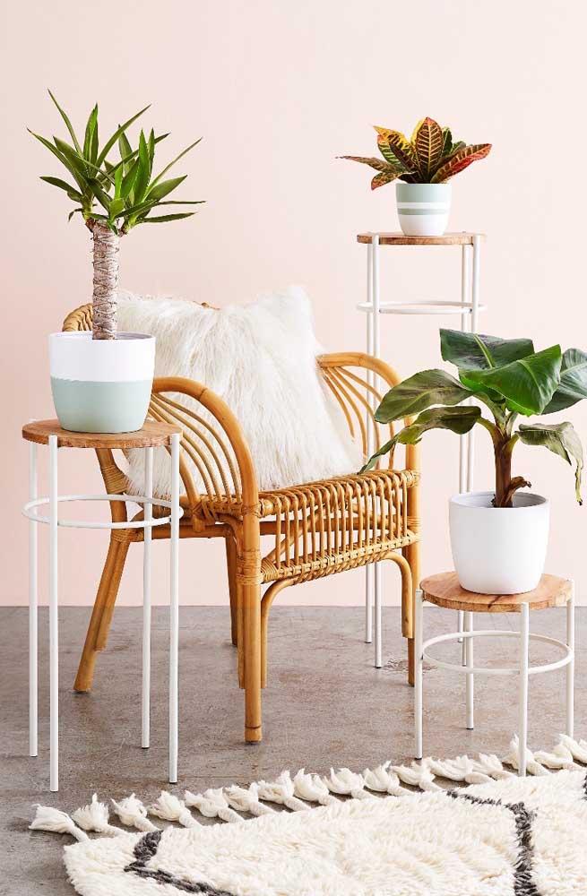 Mix de plantas nessa sala de estar
