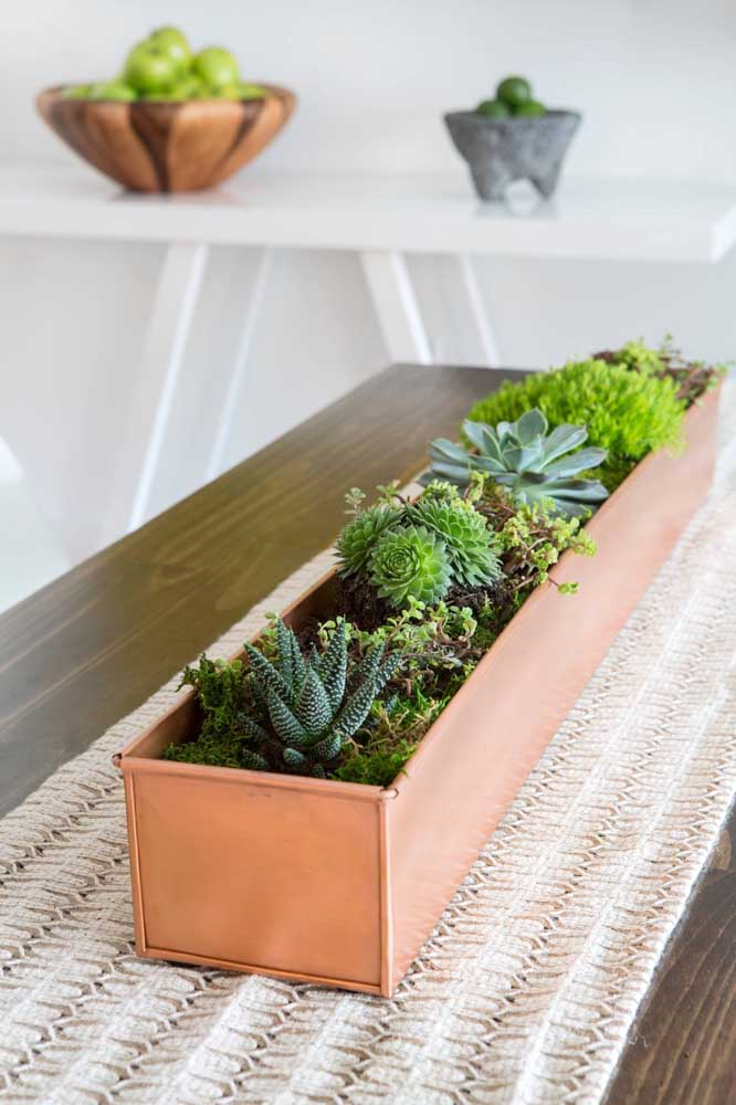 Centro de mesa alongado cheinho de suculentas, linda proposta!