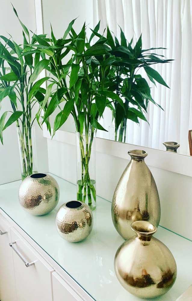 Galhos de Bambu Mossô para decorar o aparador