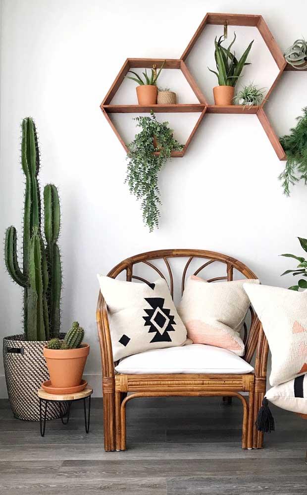 Quer um lugar para expor suas plantinhas? Os nichos de madeira são a melhor opção
