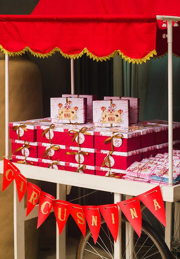 Mais um exemplo de que é possível fazer uma festa tema circo para as meninas.